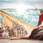 Aula Bíblica Principiantes #20