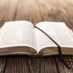 Aula Bíblica Juniores #16 – O Valor da Palavra de Deus